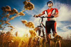 Man is riding bicycle outside in the field Royalty Free Stock Images