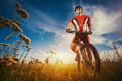 Man is riding bicycle outside in the field Stock Photo