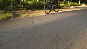 Man riding bicycle in summer park stock video