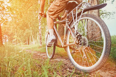 Man riding on bicycle in summer park Royalty Free Stock Photography