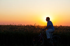 Man Riding a Bicycle at Sunset Stock Images