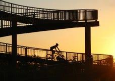Man riding bicycle at sunset Royalty Free Stock Image