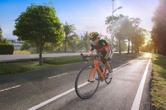 Man riding bicycle on the tiled road in the park. Stock Photo