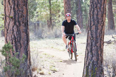 Man riding bike on dirt trail in woods Stock Photos