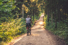 Man riding a bike in forest Royalty Free Stock Photo