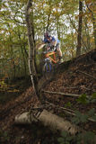 Man Riding Bike Through Forest Royalty Free Stock Photos