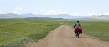 Man Riding Bike through Mongolian Steppes. A rides bikes down a dirt road through the Mongolia steppe landscape Stock Photos