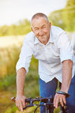 Man riding bike in summer Royalty Free Stock Photography
