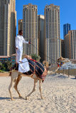 Man riding a camel on the beach. DUBAI, UAE - NOVEMBER 11, 2013: High rise buildings and man riding a camel on the beach Royalty Free Stock Photo