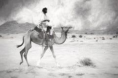 Man riding camel Stock Photos