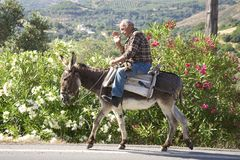 Man riding Donkey Royalty Free Stock Photo