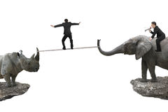Man riding elephant against rhinoceros with another balancing ro. One man riding elephant against rhinoceros with another man balancing rope on two cliffs Stock Photography