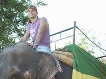 Man Riding On Elephant Royalty Free Stock Photography
