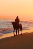 Man riding a horse on beach. Lonely man riding a horse ona a mediterranean beach at sunset Royalty Free Stock Images