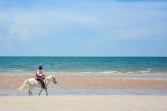 Man riding horse on the beach Stock Image
