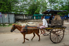 A man riding the horse cart in Agra, India Stock Images