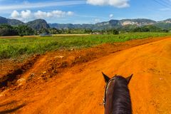 Horse ride in Cuba. Vinales countryside. royalty free stock photo