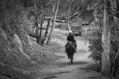 A Man Riding a Horse. In black and white Royalty Free Stock Image