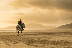 Man riding horse. A silhouette of a man riding a horse along a beautiful beach in Tarifa Andalusia Spain stock image