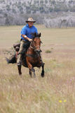 Man riding horse at speed Royalty Free Stock Photo