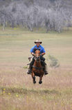 Man riding horse at speed. The man from Snowy Mountains riding a horse at full gallop Stock Photos