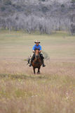 Man riding horse at speed Stock Photo