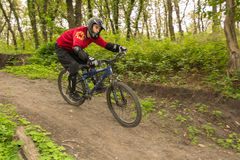 Man riding a mountain bike downhill style Royalty Free Stock Photography