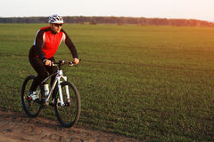 Man is riding a mountain bike in the field Royalty Free Stock Images