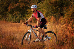 Man is riding a mountain bike in the field Royalty Free Stock Photo