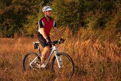 Man is riding a mountain bike in the field Stock Photography