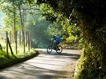 A man riding a mountain bike up a hill in a paved road out of the city royalty free stock photos