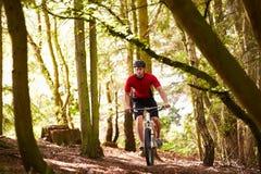 Man Riding Mountain Bike Through Woods Royalty Free Stock Photos