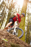 Man Riding Mountain Bike Through Woods Royalty Free Stock Photography
