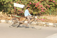 Man riding rikshaw. A man riding rikshaw on Pragati Marg delhi , Pragati marg is near to delhi noida border Royalty Free Stock Photo