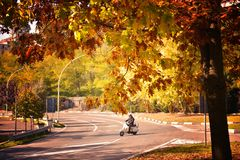 Man riding scooter. Man fun on motorbike ride on his empty way on an autumn, warm day royalty free stock photos