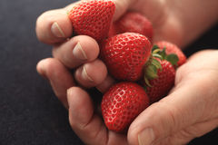 Man with ripe strawberries Royalty Free Stock Images