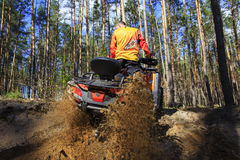 Man rises a quad bike in the forest. Royalty Free Stock Photography