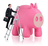Man rises up on the stepladder near piggy bank. Businessman rises up on the stepladder near big piggy bank isolated on white Stock Photos