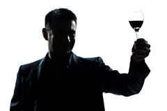 Man rising up toasting his glass of red wine Royalty Free Stock Photos