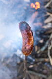 Man roasting a sausage above embers Royalty Free Stock Photos