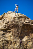 Man rock climbing, Joshua Tree National Park Royalty Free Stock Images