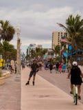 Man Rollerblading på strandpromenad med palmträd i bakgrund arkivbild