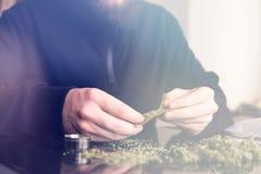 Man rolling marijuana cannabis blunt. Man rolling a marijuana weed blunt. Close up marijuana joint with lighter. Light licks color toned light leaks stock image