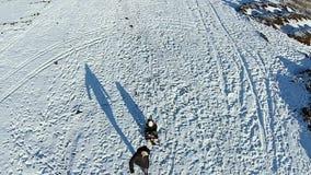 Man rolls kid fast on a sled stock footage