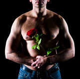 Man and rose Stock Photos