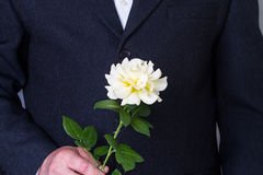 Man with a rose Royalty Free Stock Photography