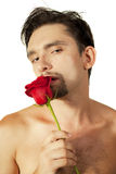 Man with a rose in its mouth on a white background Stock Image