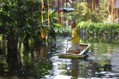 A man is rowing a bathtub in his flooded garden in Bangkok, Thailand, in November 2011 stock images