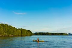 A man are rowing kayak royalty free stock photos