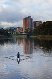 Man rowing on the River Torrens. ADELAIDE,AUSTRALIA - JUNE 7,2014: A man rows a single scull on the River Torrens in Elder Park. The area is also popular with Royalty Free Stock Image